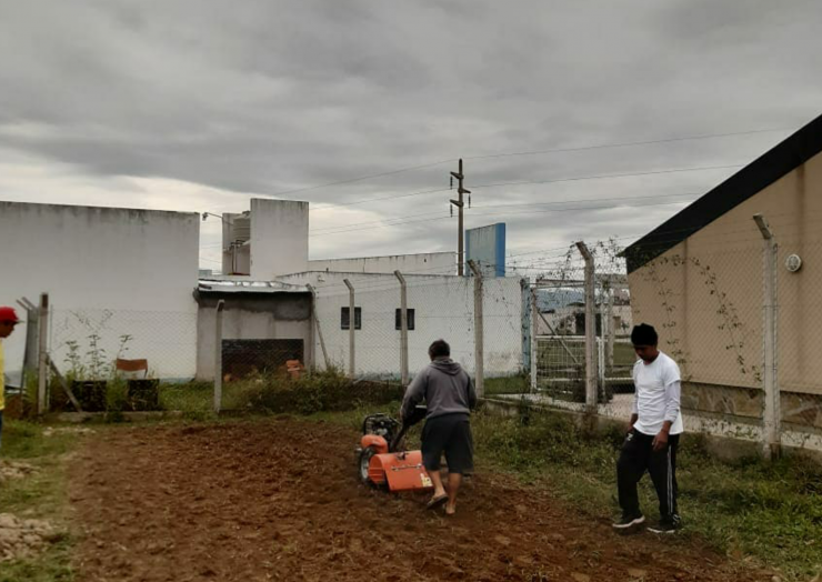 Inició el proyecto de desarrollo comunitario: La Lonja Produce
