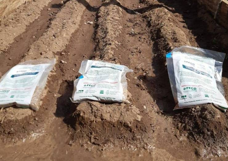 Avanza la implementación del proyecto «La Lonja Produce»