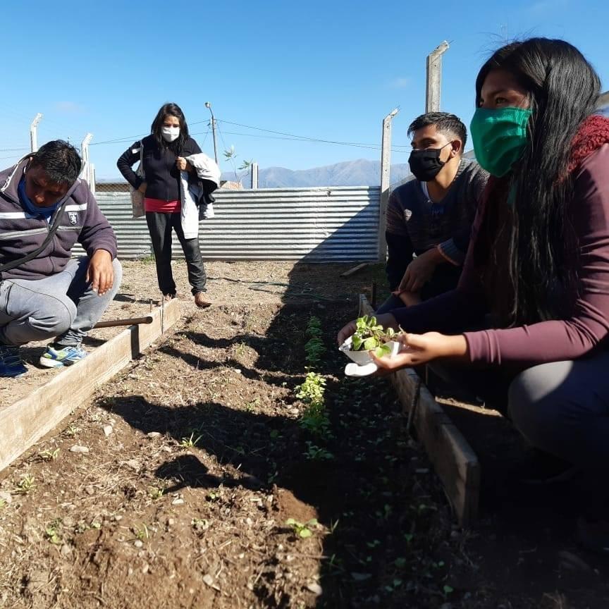 Vecinos se capacitan a través del proyecto La Lonja Produce