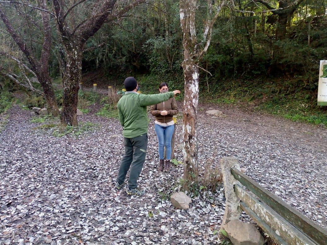 Se realiza un relevamiento forestal en la Quebrada
