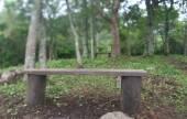 San Lorenzo inaugurará su Bosque de la Poesía